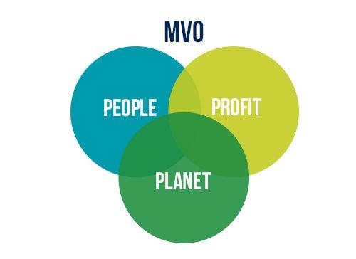 Q-Flow_MVO